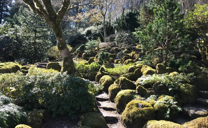 the best things in life really are free especially in portland i cant believe it took me this long to discover this hidden gem just a stones throw away - Elk Rock Garden
